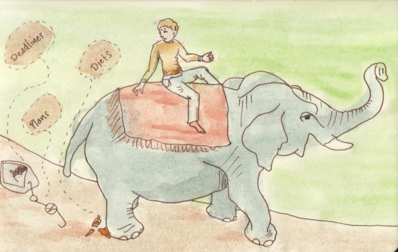 Jinete y elefante